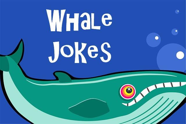 Whale Jokes | Funny Jokes About Whales - Fun Kids Jokes