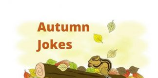 Autumn Jokes and Riddles