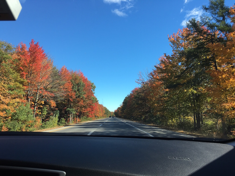 Once we got closer to Camden, Maine, Fall REALLY started to represent.
