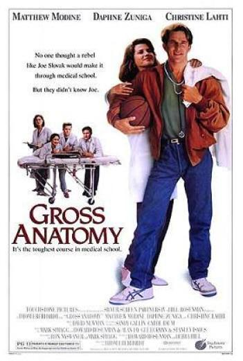 Gross_anatomy_poster