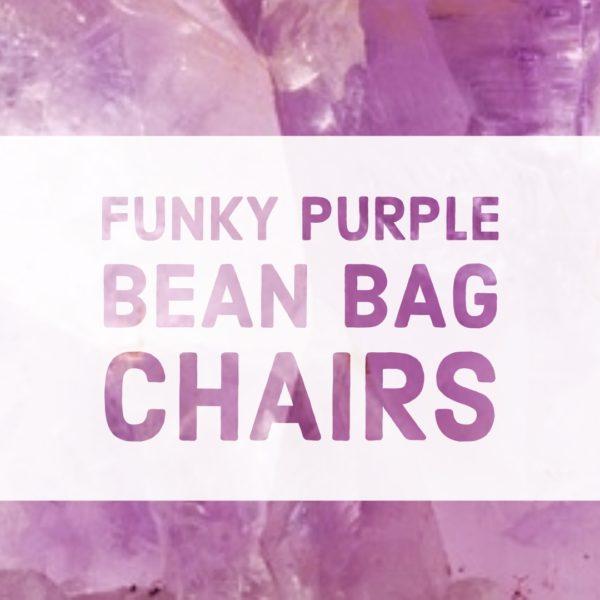 Purple Bean Bag Chairs