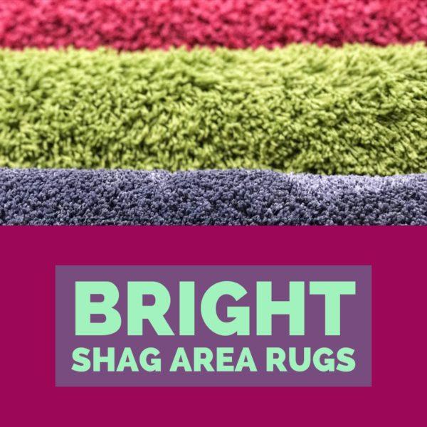 Bright Shag Area Rugs