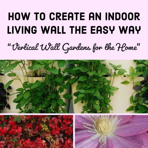 Living Walls a Vertical Garden
