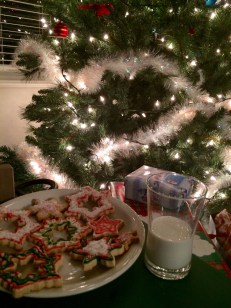 All ready for Santa :)