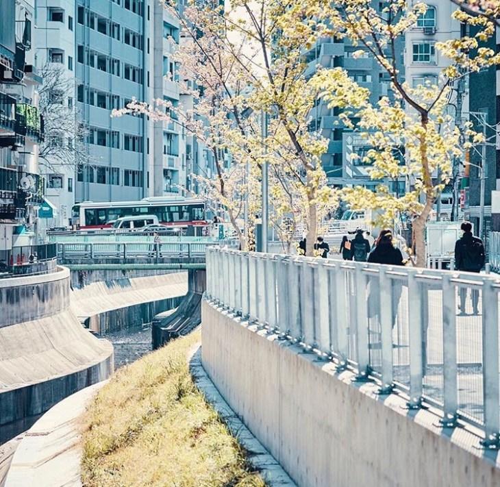 Shibuya Stream riverside