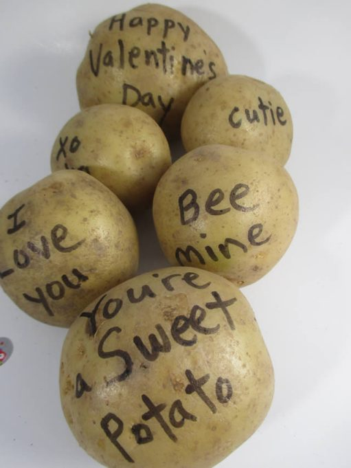 fun-valentine-potato-bouquet