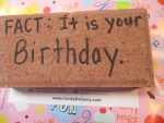 Fact - It is your birthday - Brick