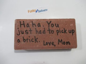 HaHa You Just had to Pick Up a Brick - Message on a Real Brick