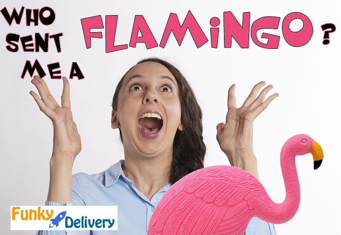 Send a Flamingo in the Mail