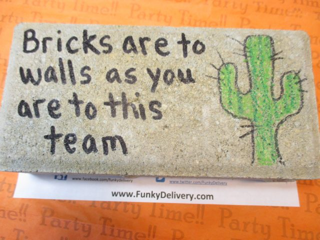 Brick with Cactus and Team Message