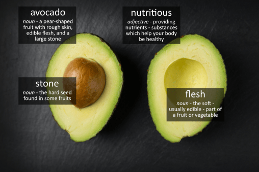 avocado vocabulary
