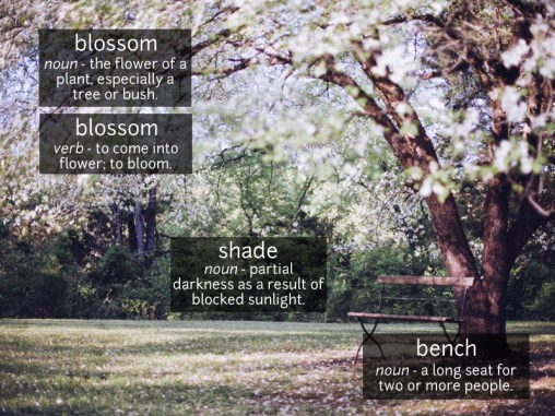 blossom vocabulary