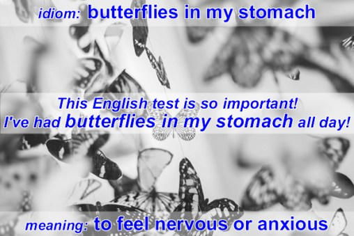 butterflies in my stomach idiom