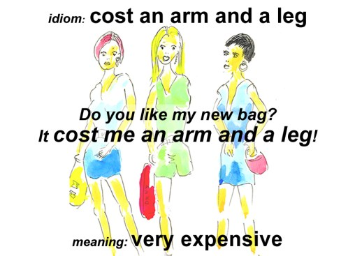 cost an arm and leg idiom