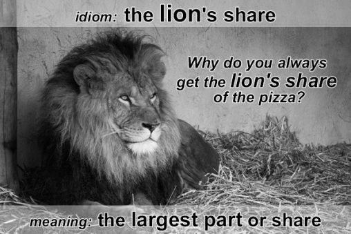 idiom lion's share