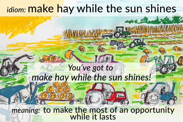 make hay while the sun shines idiom