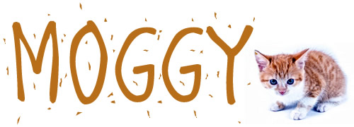 Slang - Moggy