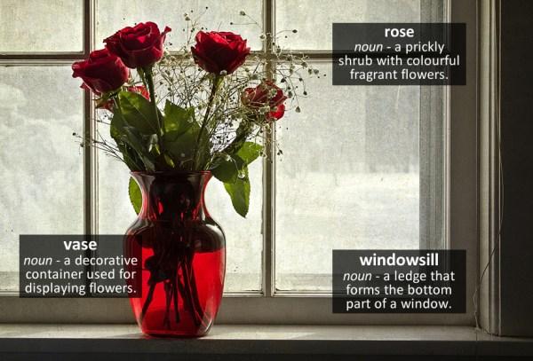 rose vocabulary