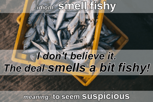 idiom - smell fishy