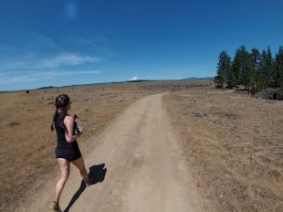 Running on the beautiful ranch