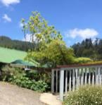 20150106_New Zealand_0551