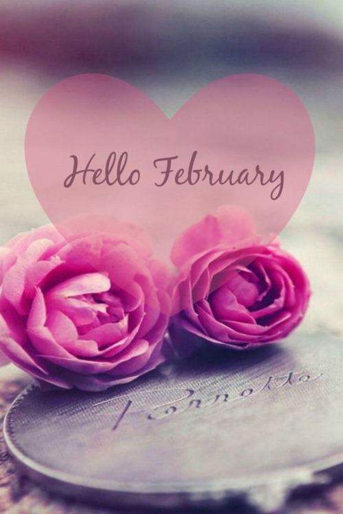 february mood board