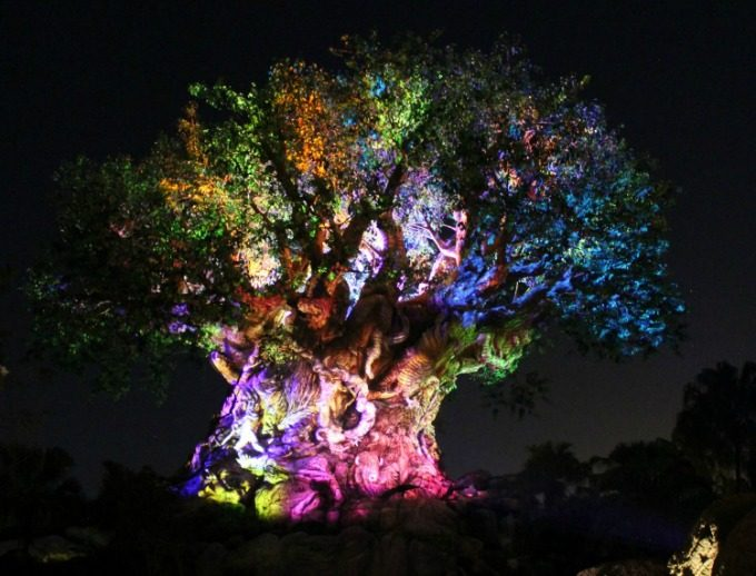 The tree of life comes alive at night in Disney's Animal Kingdom
