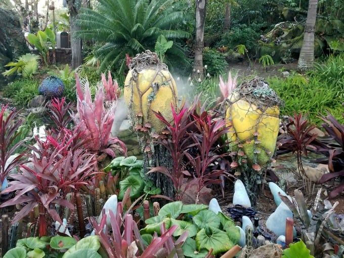 Checking out Pandora's mystical gardens during the 2018 #DSMMC Day Two