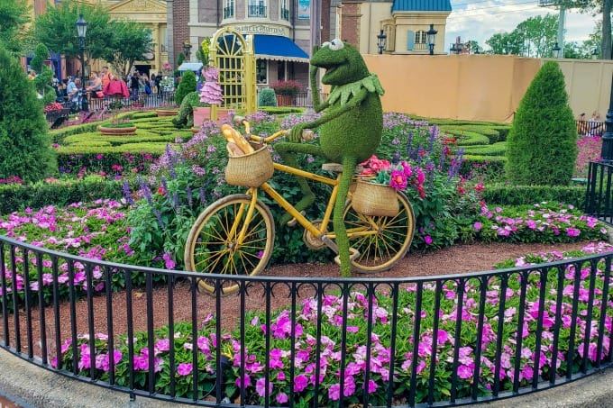 Kermit The Frog at Epcot