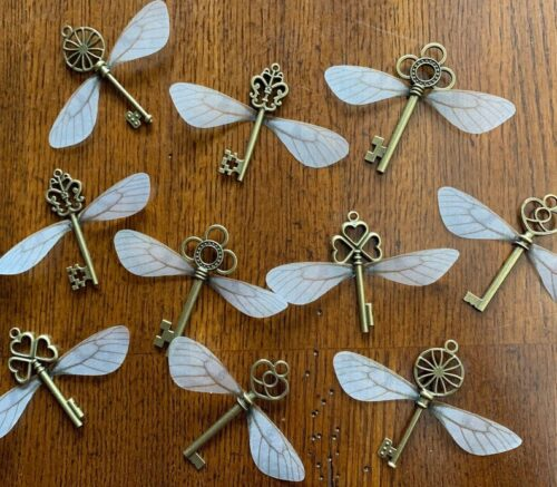 Flying keys with wings