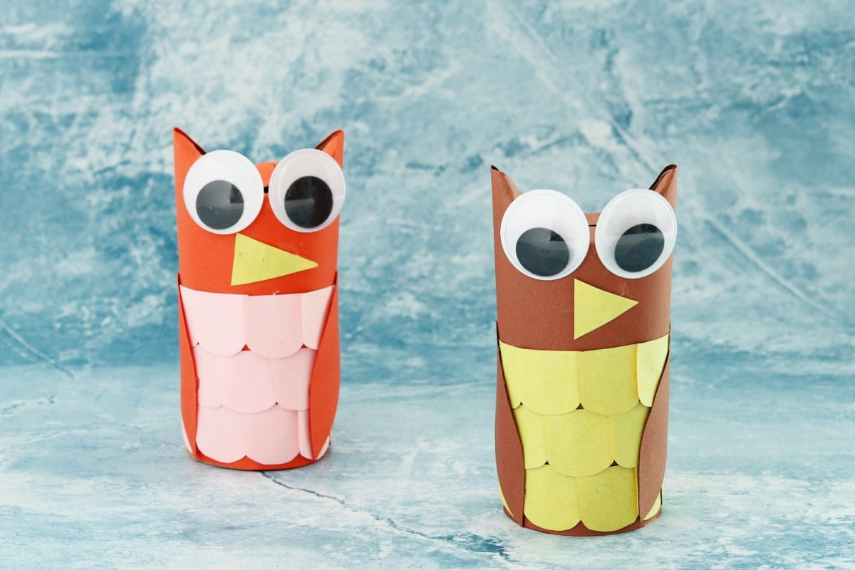 Toilet Paper Roll Owls 2