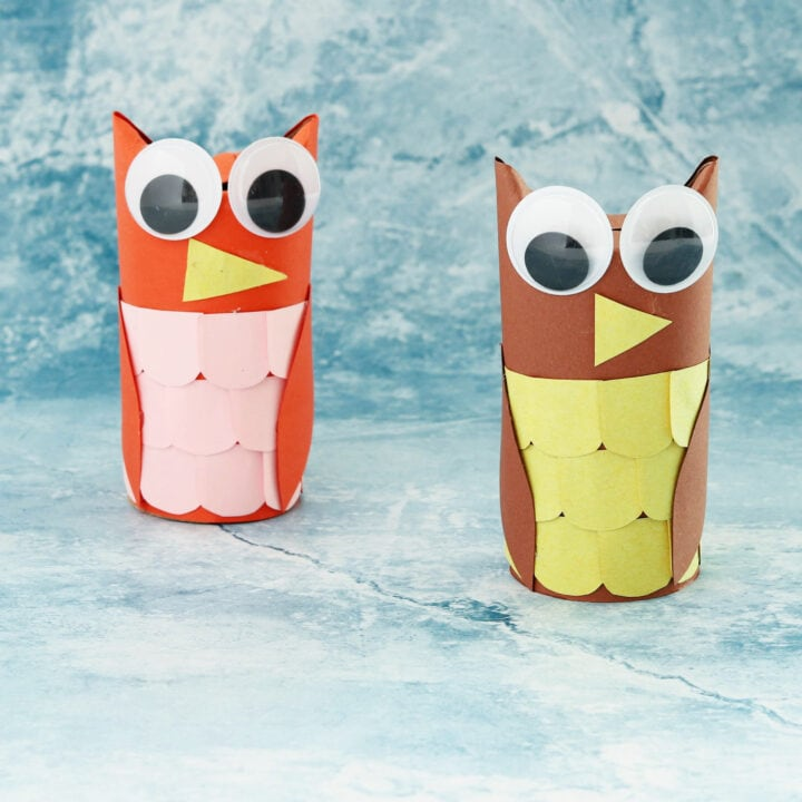 Toilet paper roll owl crafts