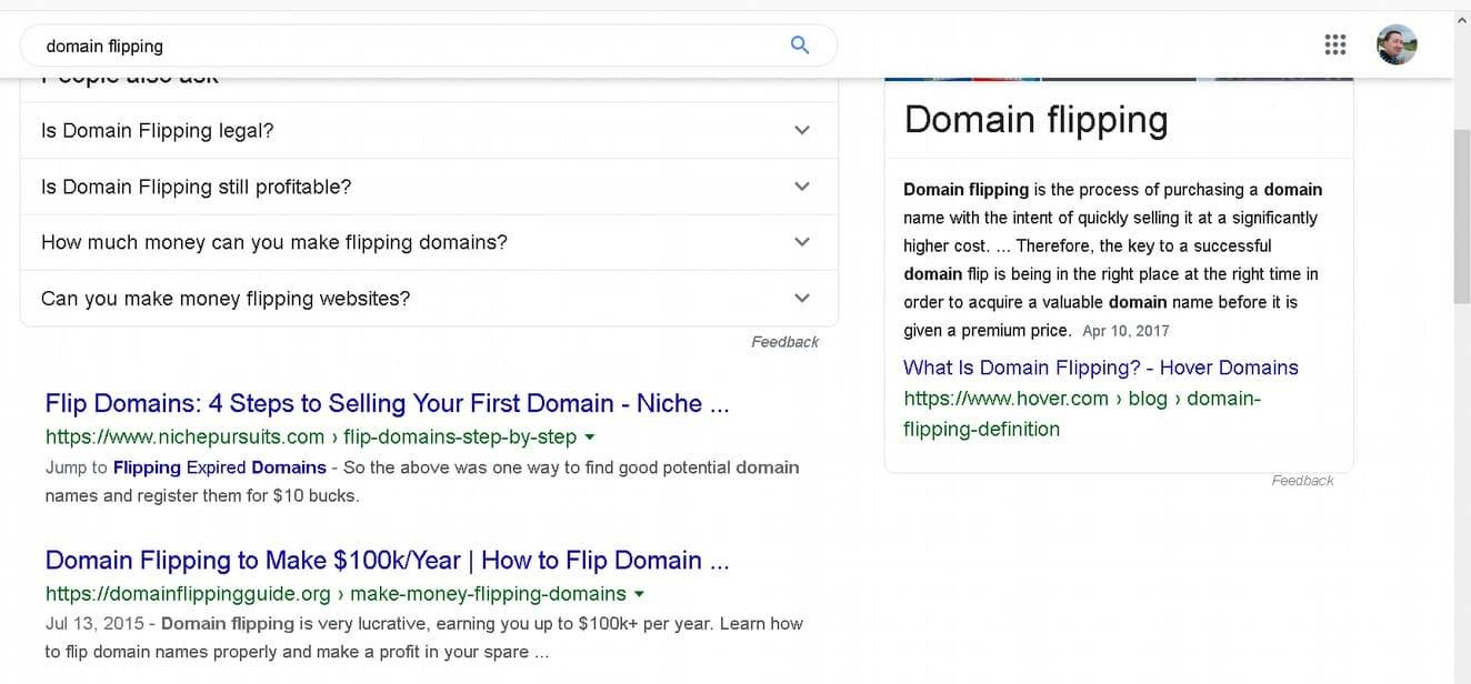 domain flipping serp