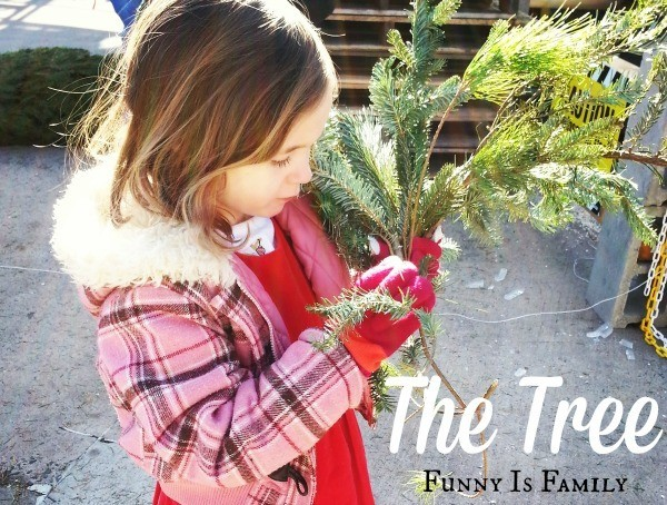 A lovely story of a Christmas tree and a family