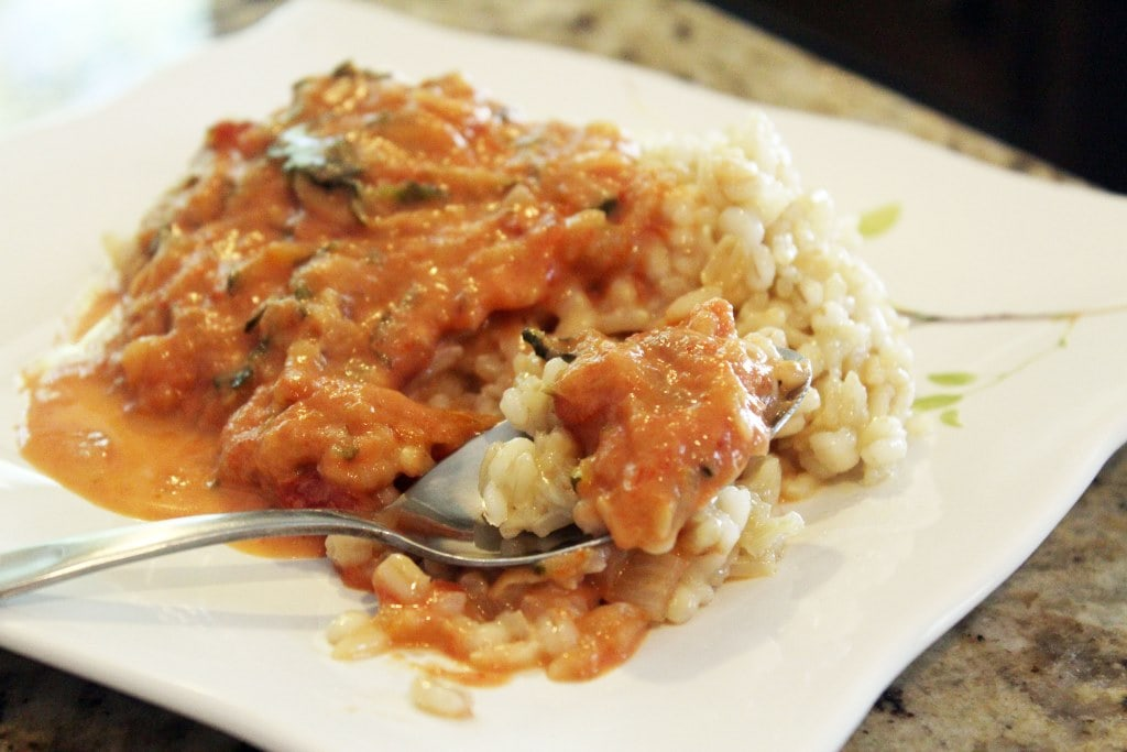 Spoon of sauce and rice