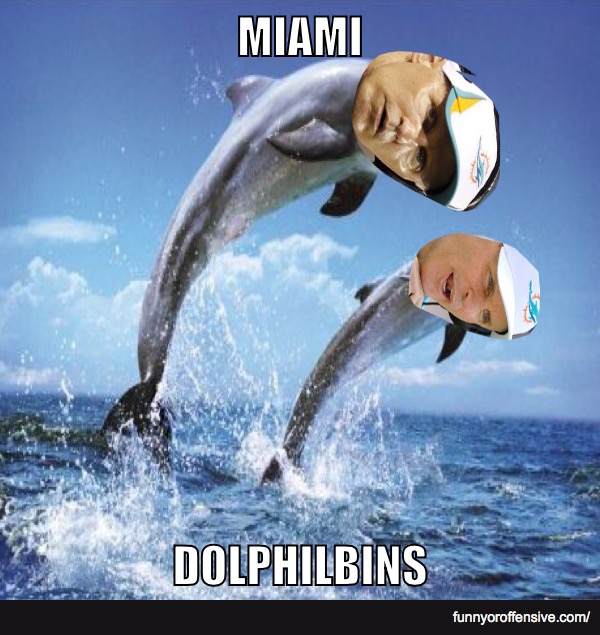 The Miami Dolphilbins