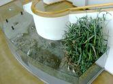 「干潟の生態系」展示 上方から1
