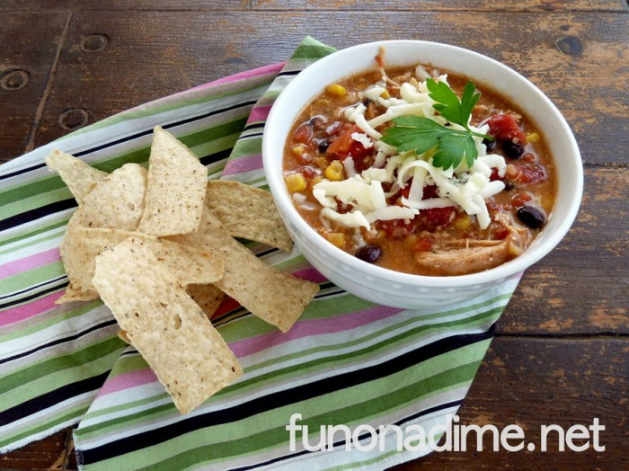 Creamy Chicken Tortilla Soup - Yum!