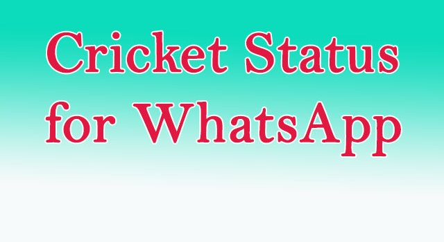 Cricket Status for Whatsapp