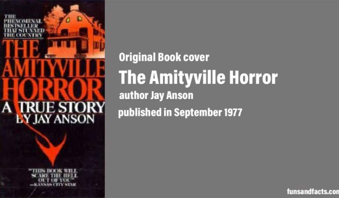 The Amityville Horror : original book cover