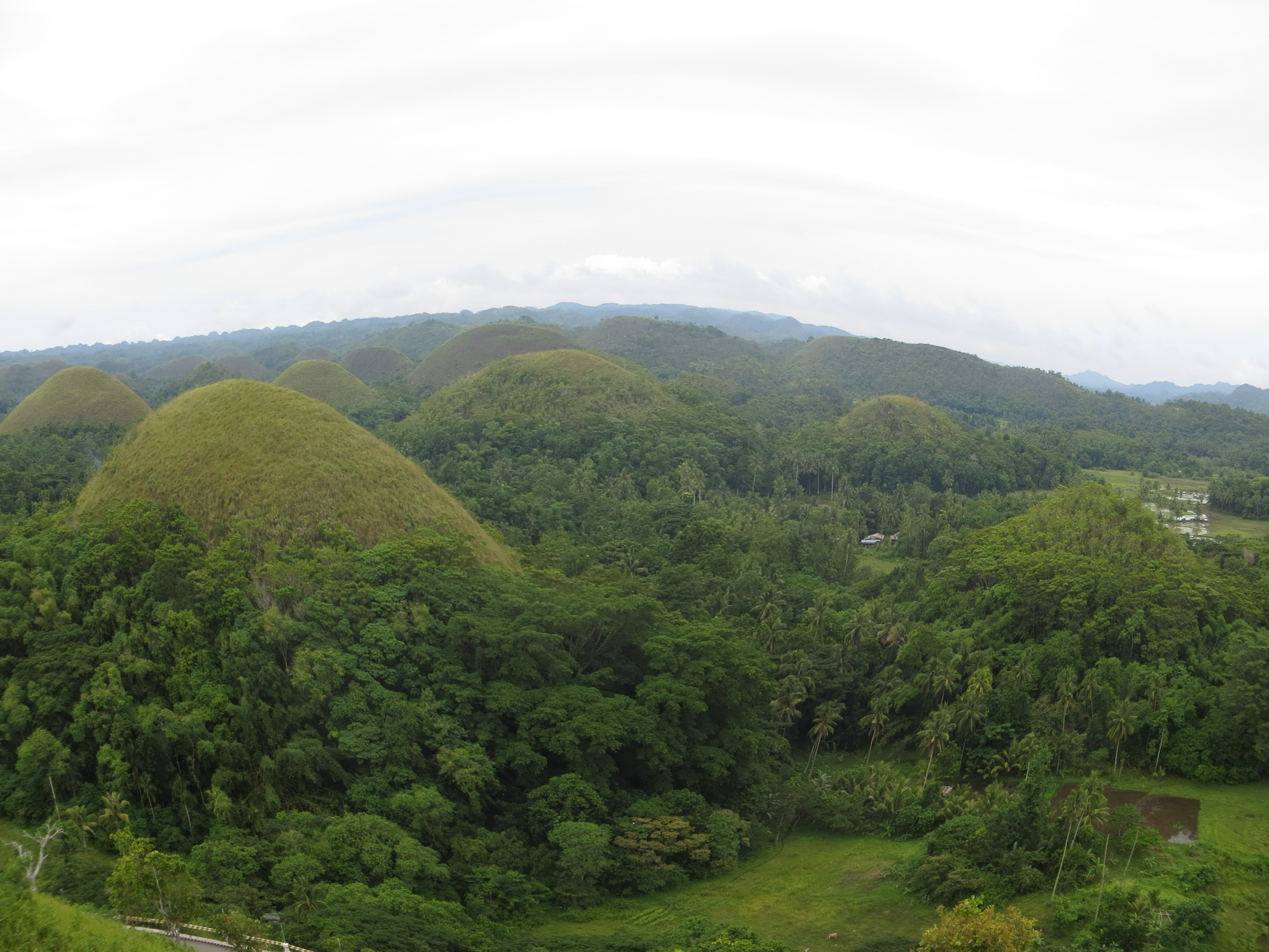 Bohol Attractions And Sight Seeing