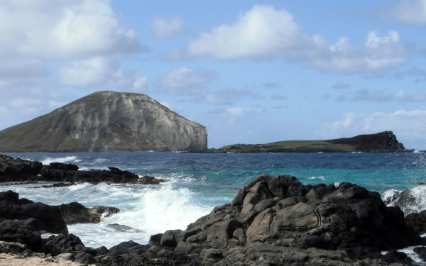 Oahu's Guide: Adventure & Sight seeing #2