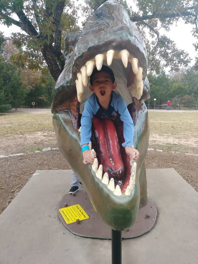 A Day Out At The Dinosaur Park