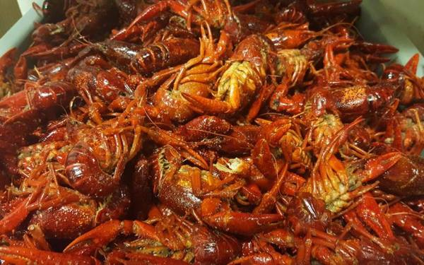 Crawfish Boils in Austin Texas