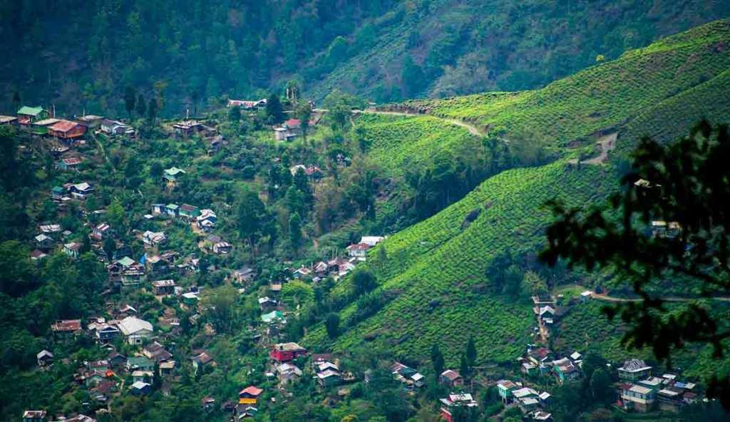 Sonada, Darjeeling - India