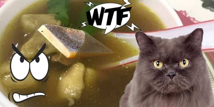 Kaju Katli Chicken Soup - WTF, Its A Food Crime