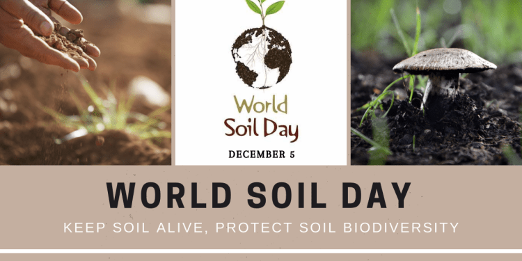 Why is World Soil Day Celebrated On 5th December