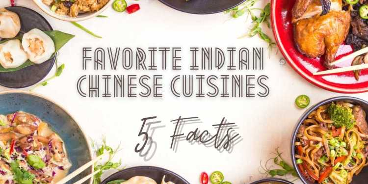 Five Facts About Your Favorite Indian Chinese Cuisines