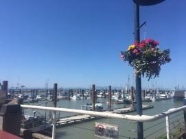 Steventon Fisherman's Wharf (20)