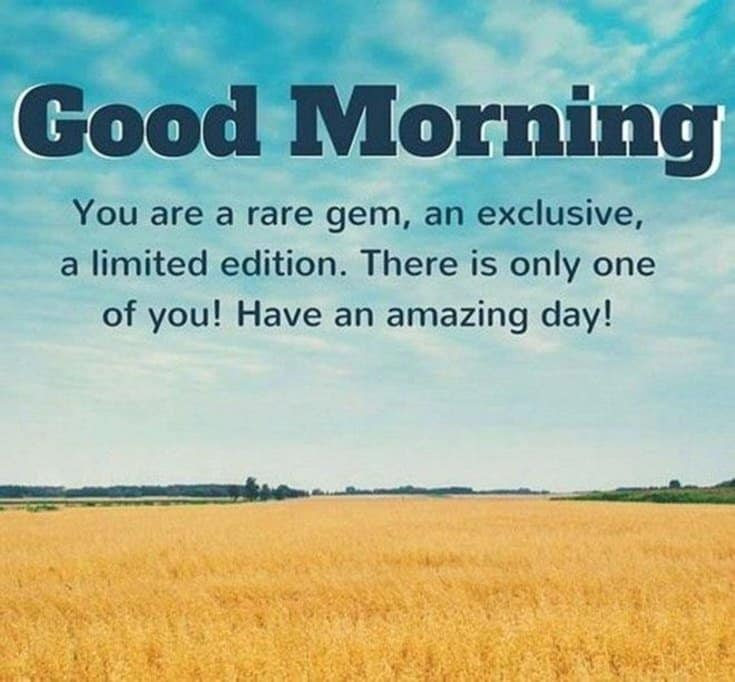 56 Inspirational Good Morning Quotes with Beautiful Images 21